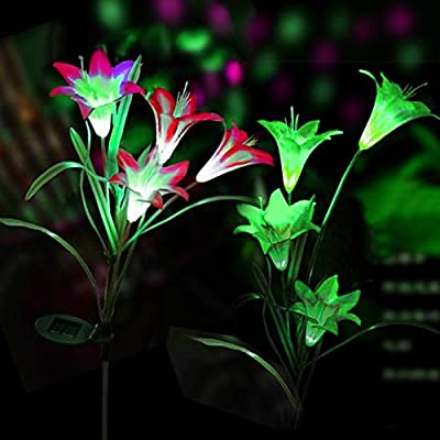 Exceptionnel Digiroot Solar Garden Stake Lights   2 Packs Outdoor Waterproof Lily Flower  Solar Powered Lights,Multi Color Changing LED Solar Stake Lights For Garden,  ...