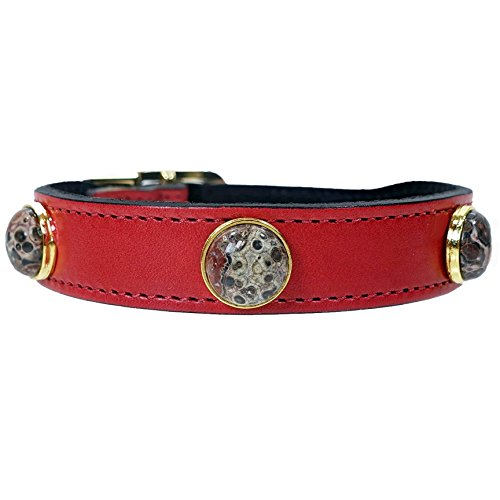 Hartman & Rose Leather Dog Collar with Unakite Semi Precious Stones - Au Natural Collection Jeweled Pet Collar Red, 18 to 20 Inch ()