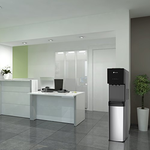 Avalon Bottom Loading Water Cooler Water Dispenser