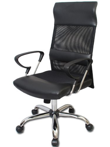 Ergonomic Swivel Office Chair with Lumbar Back Support Bolster, Pneumatic Gas Lift and Tilt (Ergo Task Chair)