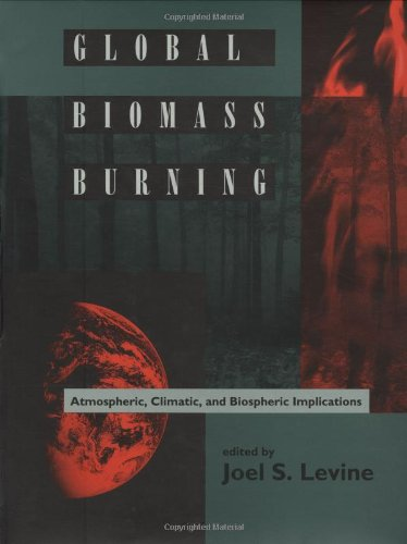 Global Biomass Burning: Atmospheric, Climatic, and Biospheric Implications