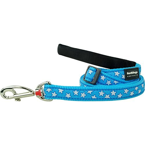 Red Dingo Dog Lead, Turquoise with White Stars, 12mm Small by Red Dingo, Inc