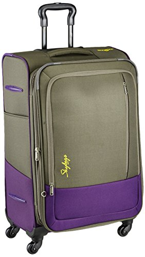 Skybags Footloose Romeo Polyester 58 cms Grey Softsided Carry-On (STROW58EGRY)- 23Inches