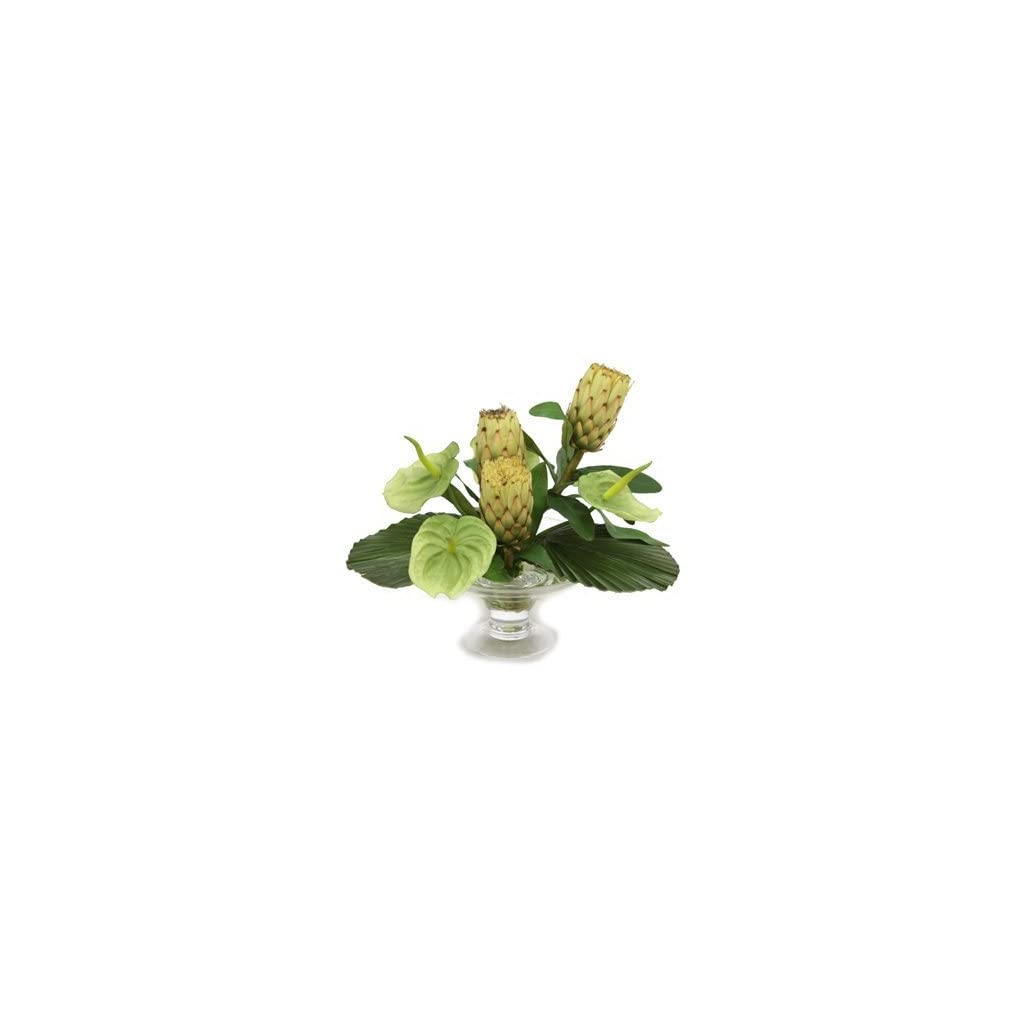 Distinctive-Designs-15766A-Waterlook-Silk-Green-Anthuriums-with-Protea-and-Leaves-in-a-Glass-Compote