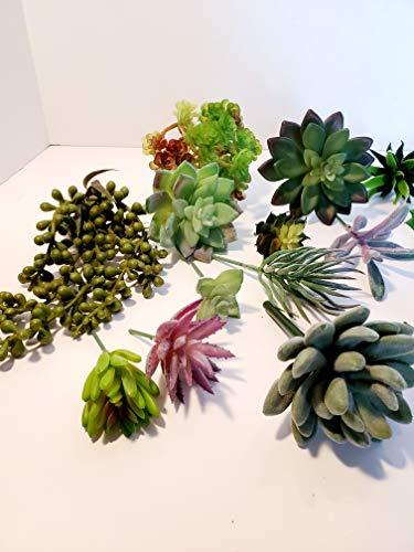 21pcs Best Artificial Succulents Plants Realistic Fake Plants Premium Unpotted Face Succulent Plants Realistic Textured…