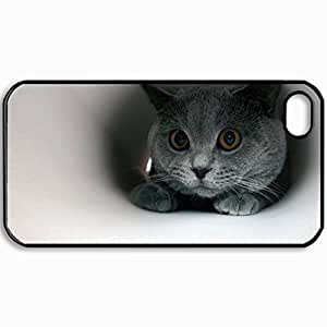 Customized Cellphone Case Back Cover For iPhone 4 4S, Protective Hardshell Case Personalized Cat Briton Pupils Black