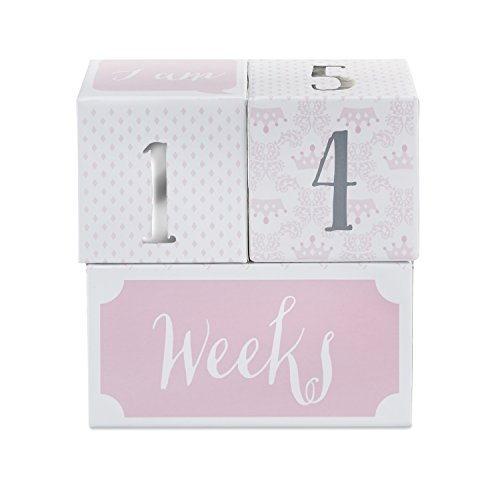 Baby Aspen My First Milestone Princess Age Blocks | Baby Picture Props For Photo Sharing The First Year by Baby Aspen