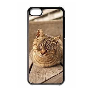 Beautiful Cute Cat Brand New Cover Case with Hard Shell Protection for Iphone 5C Case lxa#862933