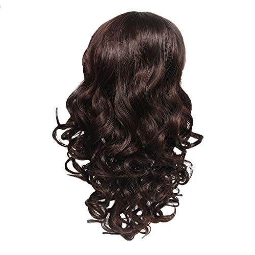 FeiFei66 New Women's Fashion Soft Wig Brown Synthetic Hair Long Wigs Wave Curly Wig,Approx.18inch ()