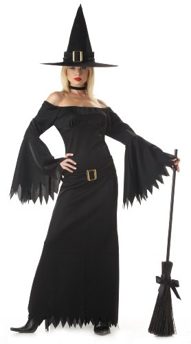California Costumes Women's Elegant Witch Costume,Black,Large