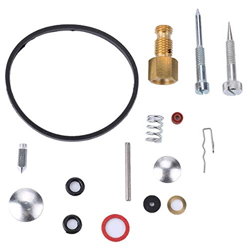 - Allong 31840 49-840 Carburetor Repair Rebuild Overhual Kit for Tecumseh H22 H25 H30 H35 H40 H50 H60 H70 HH40 HH50 HH60 HH70 Engine Lawn-boy Toro Craftman Snowblower Tiller