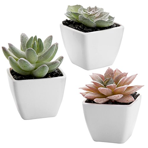 MyGift Artificial Mini Succulent Plants in White Pots, Set of 3
