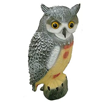 LONG EARED OWL GARDEN BIRD SCARER DETERRENT Amazoncouk Garden