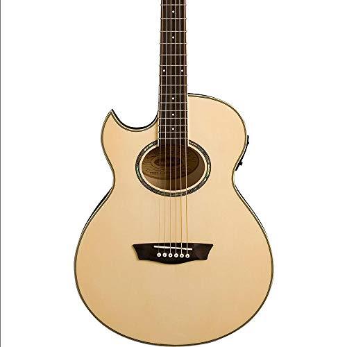 EA20 Mini Jumbo Acoustic-Electric Guitar