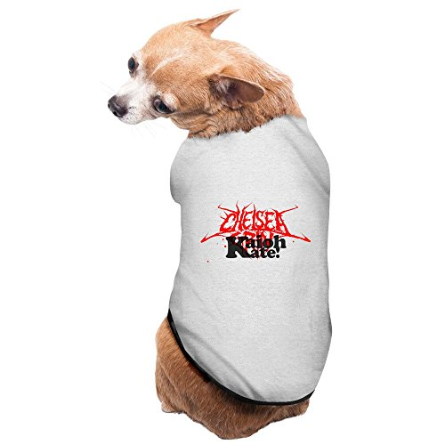 Ferreira Costumes (Gray CHELSEA GRIN Ashes To Ashes Pet Supplies Dog Costume Warm)