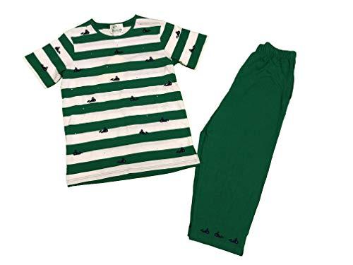 (Quacker Factory Women's 2 pc Capri Pant Set Whale Small Green)