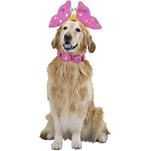 pet butterfly dog halloween costume size large