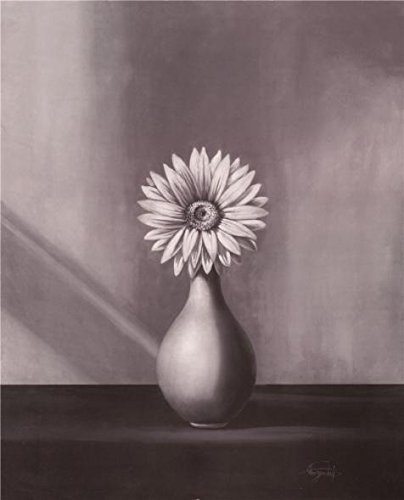 Oil Painting 'Gerbera Daisy On Black-and-White Canvas Print', 10 x 12 inch / 25 x 31 cm , on High Definition HD canvas prints is for Gifts And Dining Room, Game Room And Laundry Room Decoration, fast