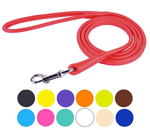 CollarDirect Rolled Leather Dog Leash 4ft, Soft Padded Training Leather Dog Lead 6ft, Puppy Leash Rolled Leather Small Medium Large Black Blue Red Orange Green Pink White (Red, Size XS 4ft)