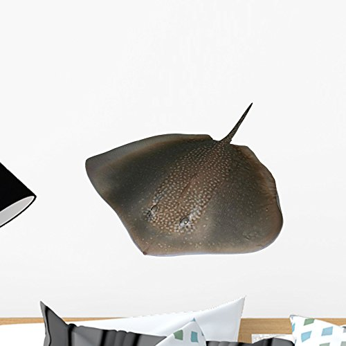 Wallmonkeys Stingray Wall Decal Peel and Stick Graphic WM159542 (18 in W x 14 in H) ()