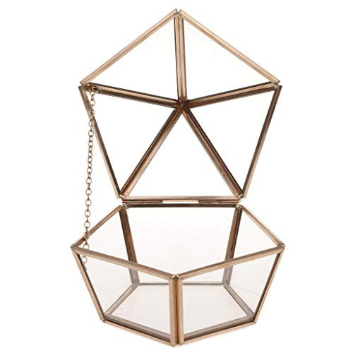(Vintage Anti Gold Geometric Terrarium Faceted Succulent Plants Planter Decor)