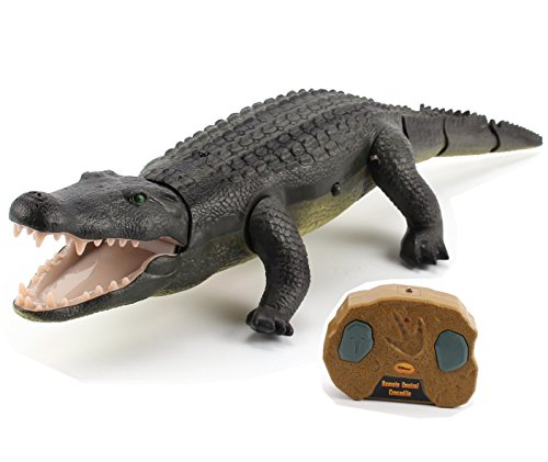 (Top Race Remote Control Crocodile, Prank Crocodile RC Animal Toy, Looks Real Feels Real Roars and Moves Like a Real Crocodile (TR-Croc))