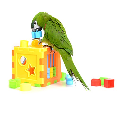 Alfie Pet by Petoga Couture - Brice Educational Training Block Toy for Birds