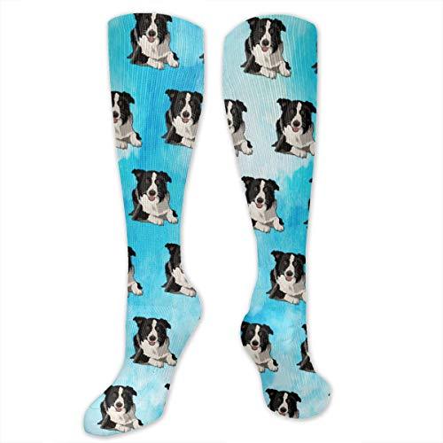 Border Collie High Long Socks Tube Stockings Long Dress Socks