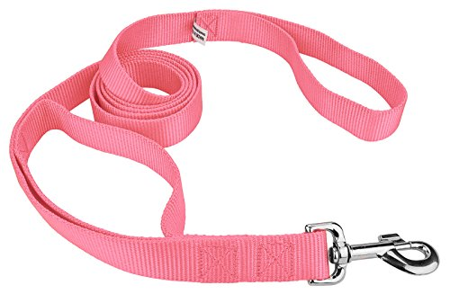 Image of Country Brook Design | 6ft By 1 Inch Heavyduty Doublehandle Nylon Leash - Pink
