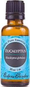Eucalyptus 100% Pure Therapeutic Grade Essential Oil - 30 ml