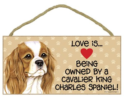 Love is Being Owned by a Cavalier King Charles Spaniel 5 x 10 MDF Wood Sign SJT ENTERPRISES INC SJT60522