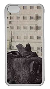 Customized iphone 5C PC Transparent Case - The Buffalo Personalized Cover