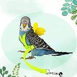 luckycyc Bird Harness, Pet Parrot Bird Harness and