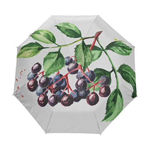 (XDCGG Nice Uv Protection Umbrella For Rainy Day Sambucus Anti-uv Polyester With Cover Automatic Open Close For Children)