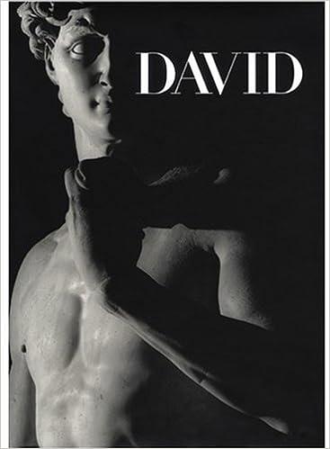 michelangelos david from symbol to myth