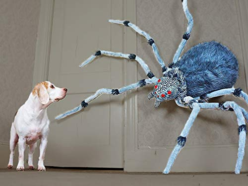 Dogs vs Giant Spider Prank -