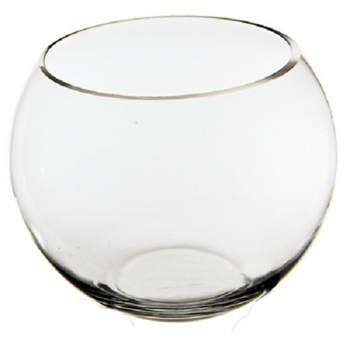 CYS EXCEL Glass Bubble Bowl, Fish Bowl Hand Blown Glass- H:4.5