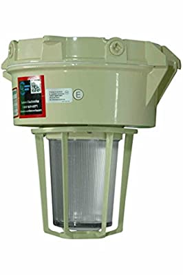 Explosion Proof Light - 250 Watt Metal Halide -Multi-tap - Class 2 Division 1(-Wall-Multi-Tap)