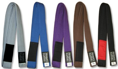 - Brazilian Jiu Jitsu Belt - Purple - Size A3