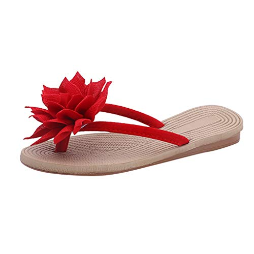 Women Sandals Simayixx Women's Top Flip Flops Open Toe Casual Slippers Beach Bath Shower Thong Sandal Summer Shoes Clogs Red