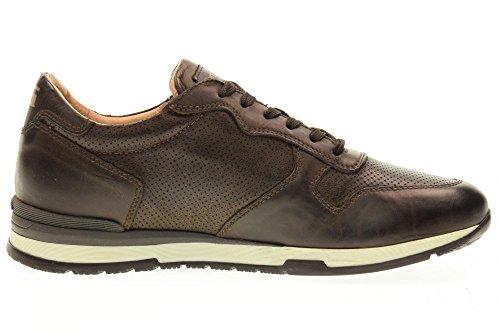 NERO GIARDINI man low sneakers P704800U / 300 Brown OMgLMq6iA