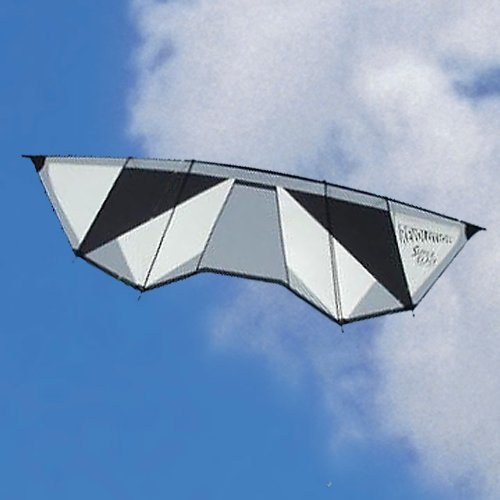 Revolution Power Blast Quad Line Power Stunt Kite White Black Made in the USA