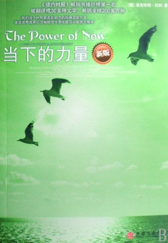 the-power-of-now-new-edition-chinese-edition