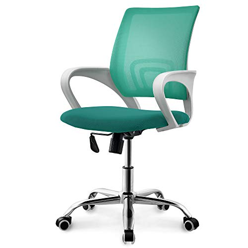 (Neo Chair Two Tone Color Fashionable Home Office Chair Conference Room Desk Task Computer Mesh Chair : Ergonomic Lumbar Support Swivel Adjustable Tilt (Premium Fashion Mesh Green))