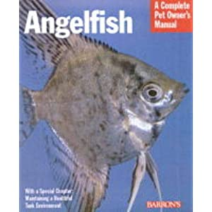 Angelfish (Complete Pet Owner's Manuals) 42