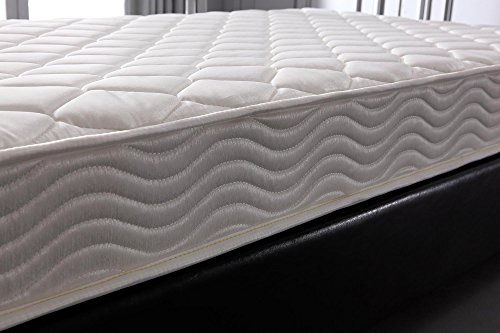 Home Life Comfort Sleep 6 Inch Mattress Greenfoam Certified Twin