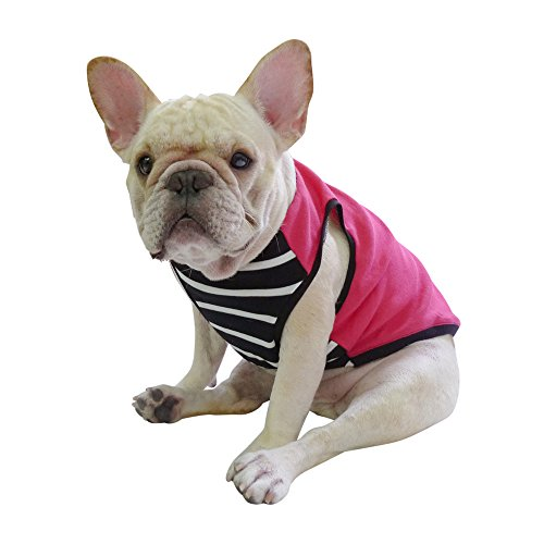 french bulldog clothes for dogs - 4