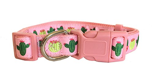 Sunshine Vibes Dog Collar for Medium-Large dog - Cactus Print Dog Collar - 12-20 Inch Adjustable Diameter Dog Collar - Available in Pink and Blue - Comfortable Plastic Buckle - Easy to Put On ()