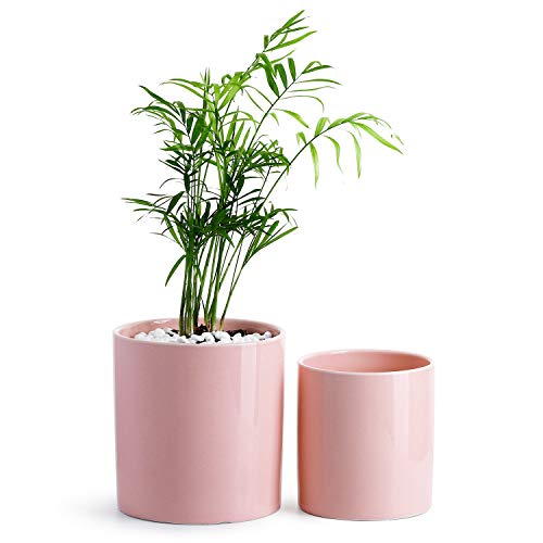 Potey Ceramic Planter Flower Plant Pot - 4.9