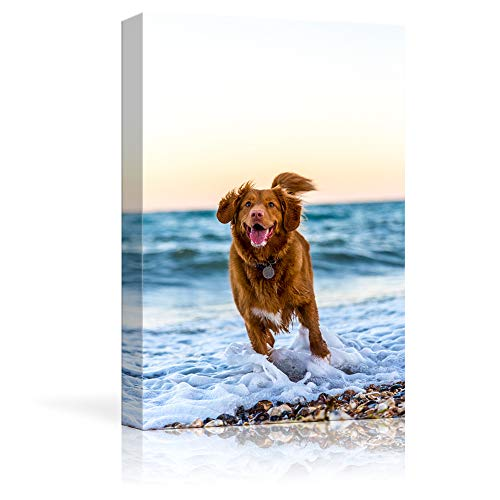 NWT Custom Canvas Prints with Your Photos for Pet/Animal, Personalized Canvas Pictures for Wall to Print Framed 10x8 inches (Best Cheap Canvas Prints)